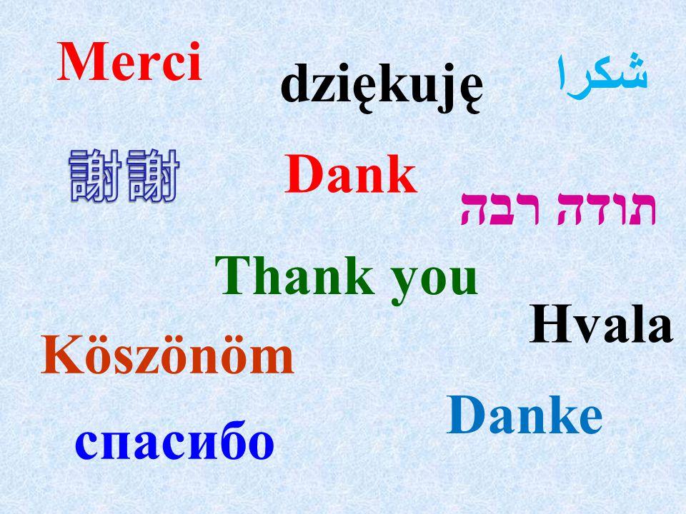 Merci תודה רבה Thank you شكرا спасибо Danke Dank Köszönöm Hvala dziękuję