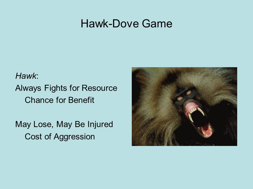 Hawk-Dove Game Hawk: Always Fights for Resource Chance for Benefit May Lose, May Be Injured Cost of Aggression