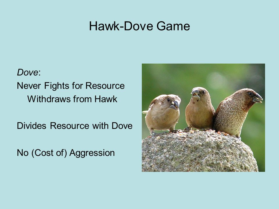 Hawk-Dove Game Dove: Never Fights for Resource Withdraws from Hawk Divides Resource with Dove No (Cost of) Aggression
