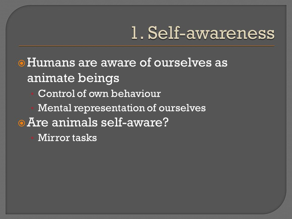  Humans are aware of ourselves as animate beings Control of own behaviour Mental representation of ourselves  Are animals self-aware? Mirror tasks