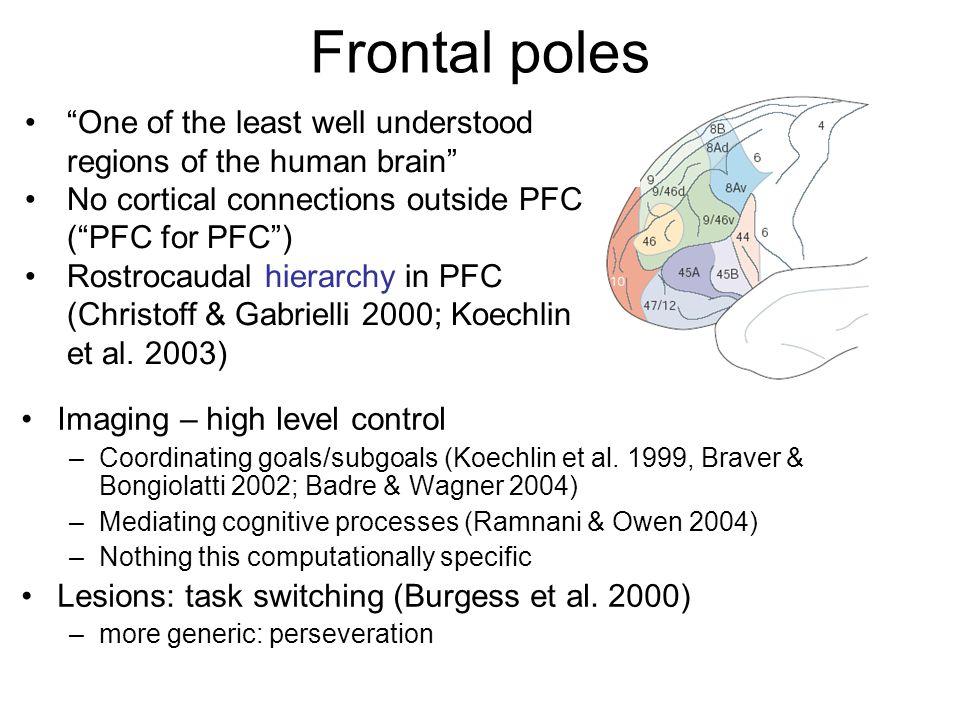 Frontal poles Imaging – high level control –Coordinating goals/subgoals (Koechlin et al. 1999, Braver & Bongiolatti 2002; Badre & Wagner 2004) –Mediat