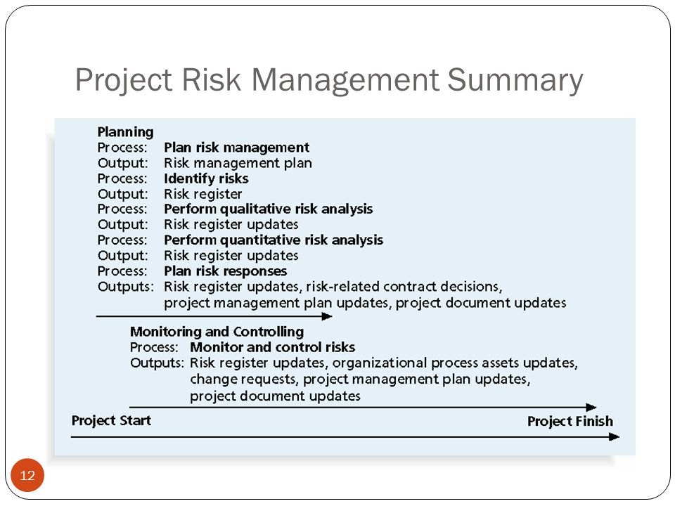Project Risk Management Summary 12