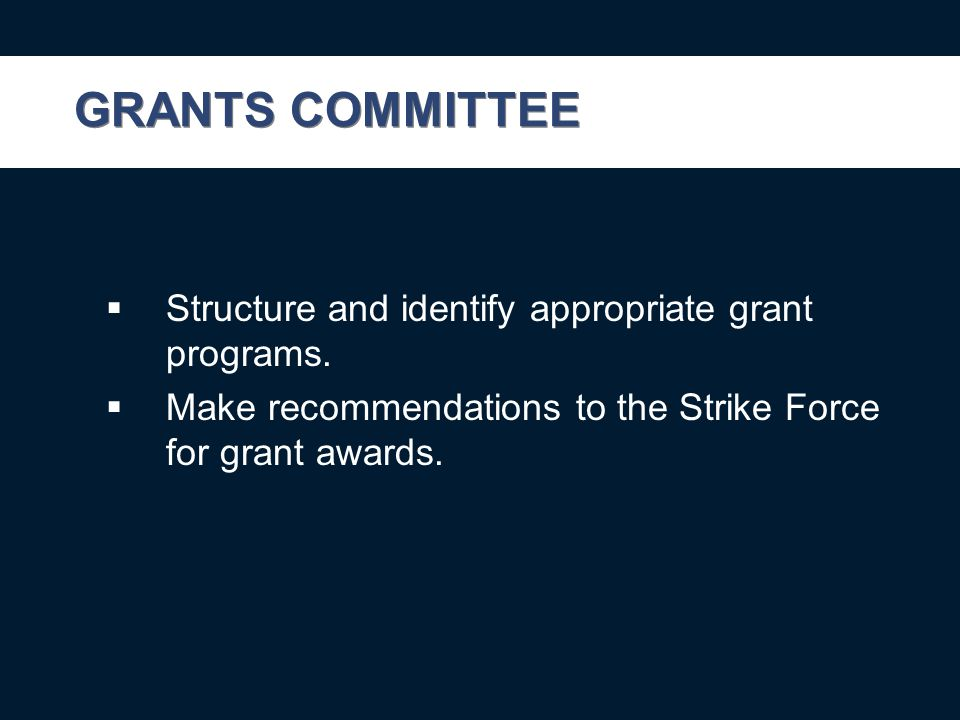 GRANTS COMMITTEE  Structure and identify appropriate grant programs.
