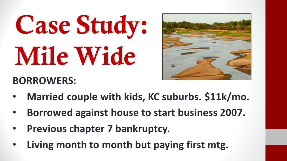 Case Study: Arizona Rattler BORROWER Single borrower with steady job and no dependents.