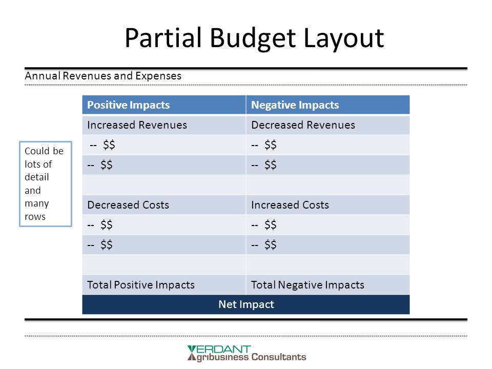 Partial Budget Layout Annual Revenues and Expenses Positive ImpactsNegative Impacts Increased RevenuesDecreased Revenues -- $$ Decreased CostsIncreased Costs -- $$ Total Positive ImpactsTotal Negative Impacts Net Impact Could be lots of detail and many rows