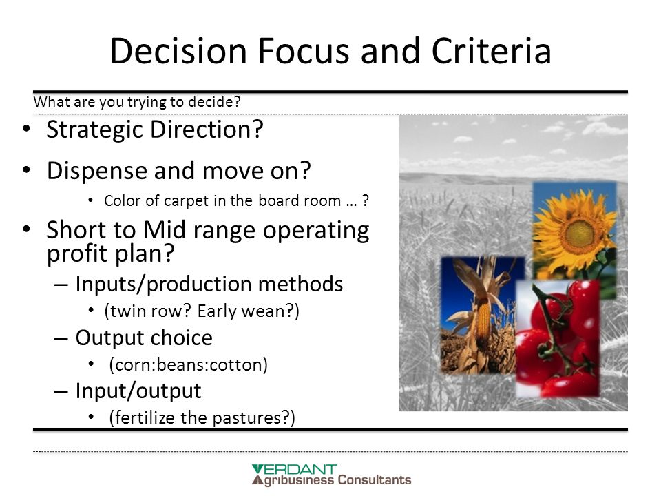 Decision Focus and Criteria Strategic Direction. Dispense and move on.