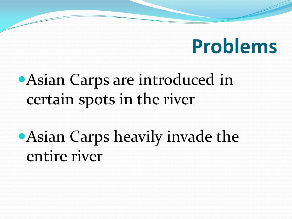 Problems Asian Carps are introduced in certain spots in the river Asian Carps heavily invade the entire river