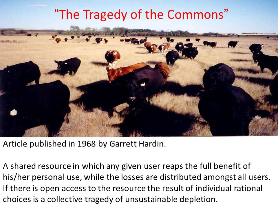 The Tragedy of the Commons Article published in 1968 by Garrett Hardin.