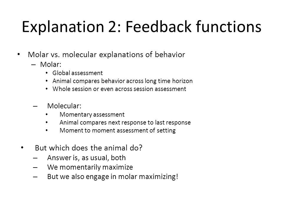 Explanation 2: Feedback functions Molar vs.