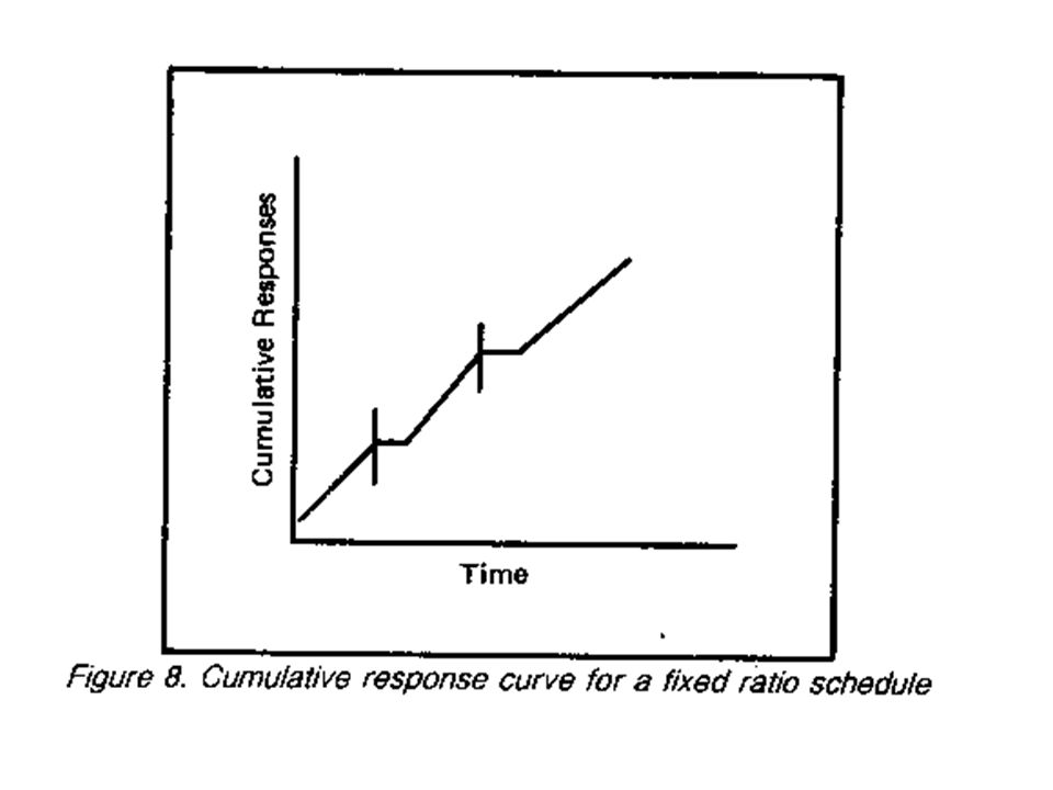 Concurrent Schedules Two or more basic schedules operating independently at the same time for two or more different behaviors – organism has a choice of behaviors and schedules – You can take notes or daydream (but not really do both at same time) Provides better analog for real-life situations