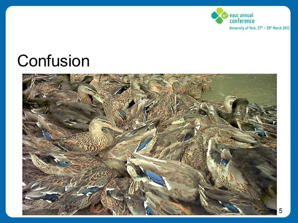 5 Confusion