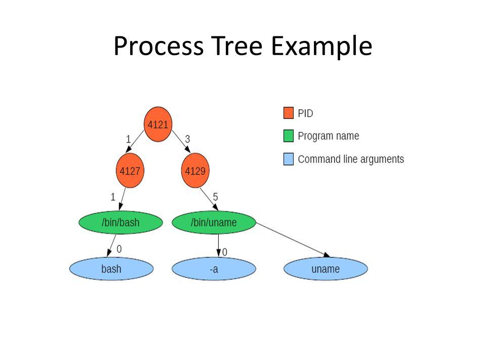 Process Tree Example
