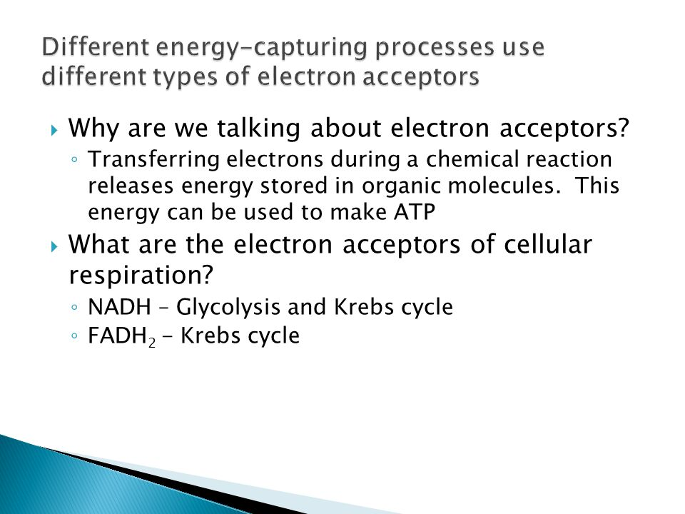  Why are we talking about electron acceptors.