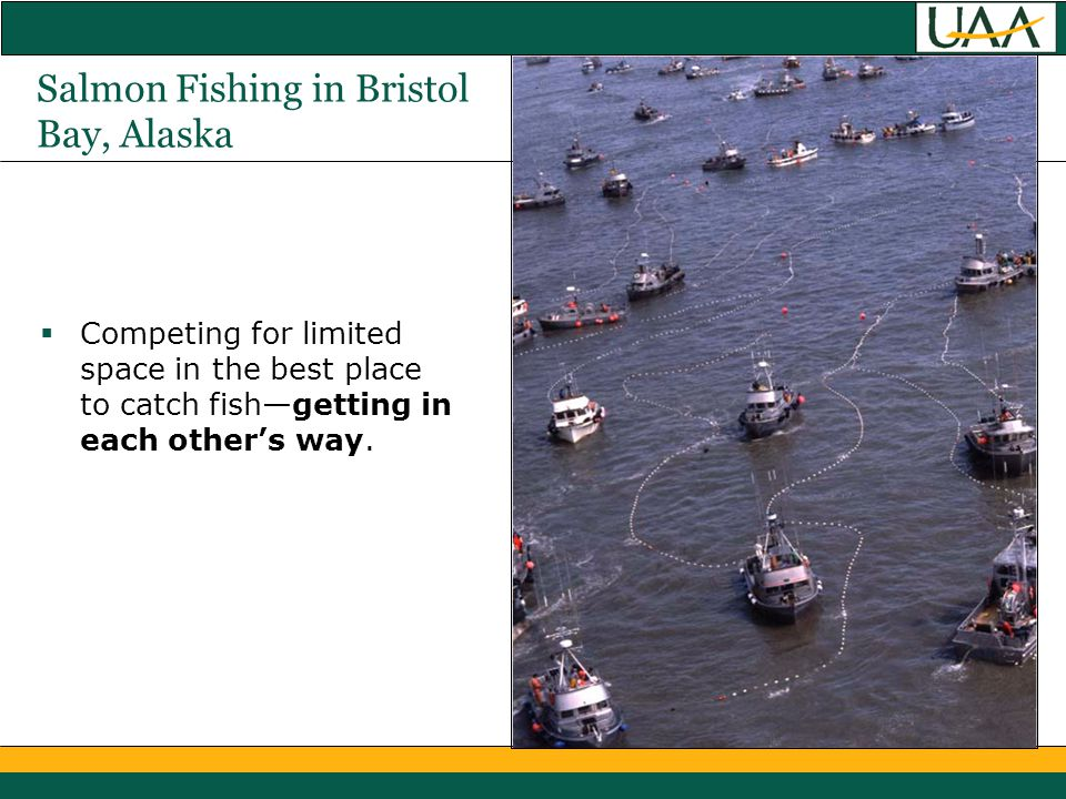Salmon Fishing in Bristol Bay, Alaska  Competing for limited space in the best place to catch fish—getting in each other's way.