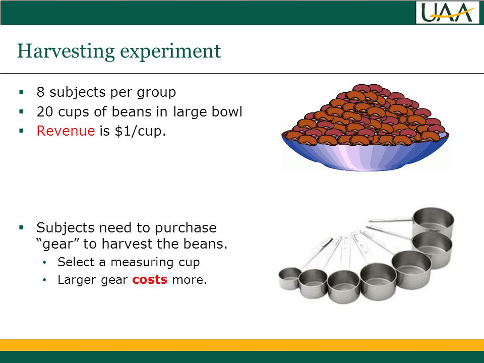 Harvesting experiment  8 subjects per group  20 cups of beans in large bowl  Revenue is $1/cup.