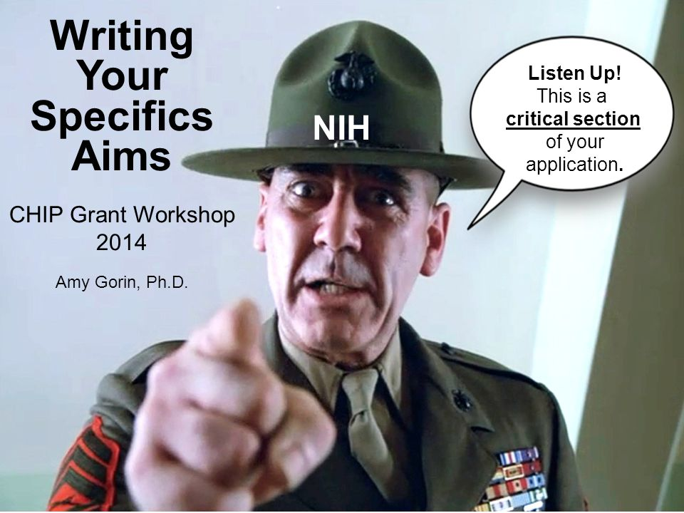 NIH Writing Your Specifics Aims CHIP Grant Workshop 2014 Amy Gorin, Ph.D. Listen Up! This is a critical section of your application.