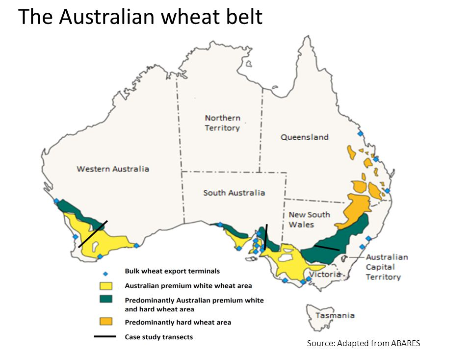 The Australian wheat belt Source: Adapted from ABARES