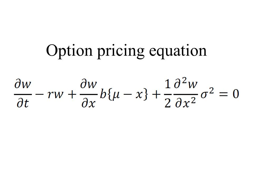 Option pricing equation