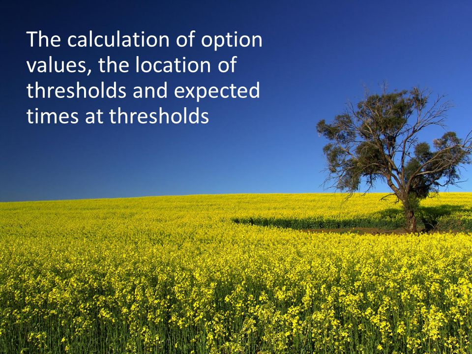 The calculation of option values, the location of thresholds and expected times at thresholds