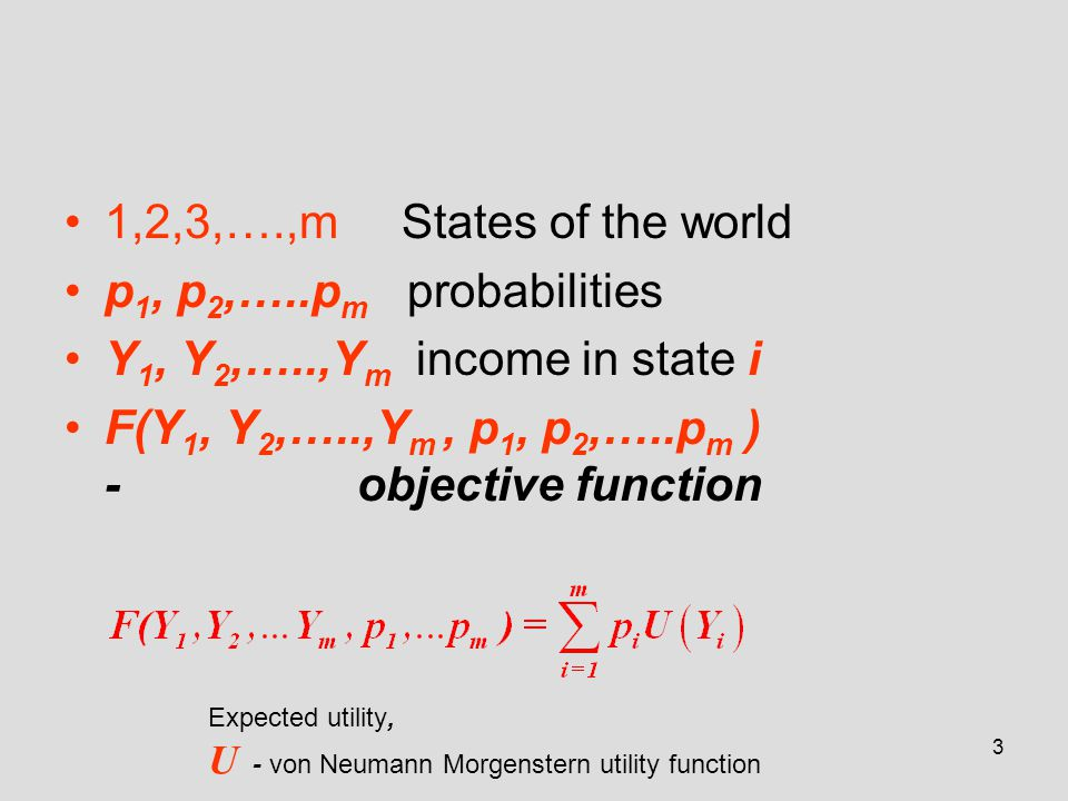 3 1,2,3,….,m States of the world p 1, p 2,…..p m probabilities Y 1, Y 2,…..,Y m income in state i F(Y 1, Y 2,…..,Y m, p 1, p 2,…..p m ) - objective fu
