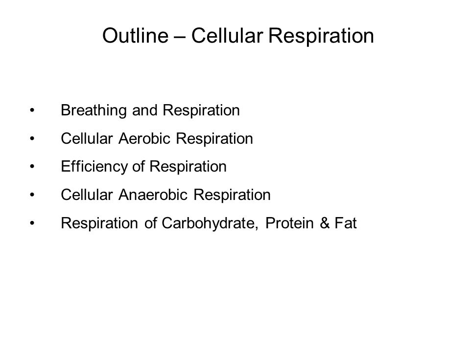 Breathing and Respiration Cellular Aerobic Respiration Efficiency of Respiration Cellular Anaerobic Respiration Respiration of Carbohydrate, Protein & Fat Outline – Cellular Respiration