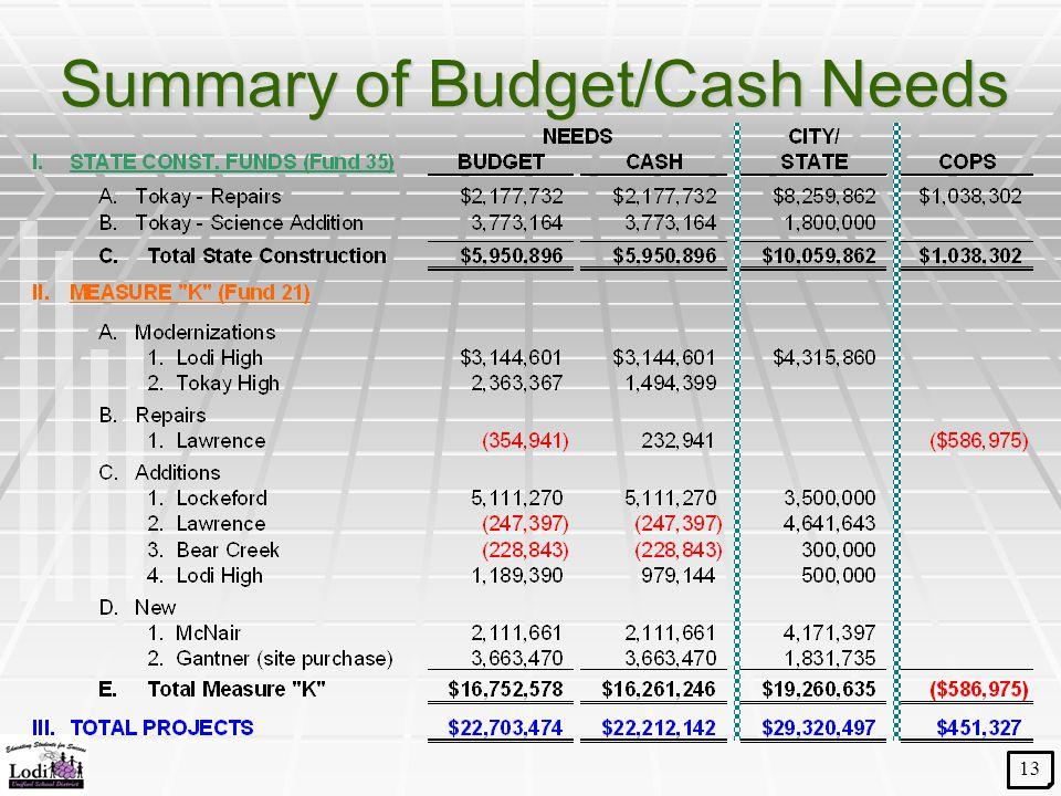Summary of Budget/Cash Needs 13