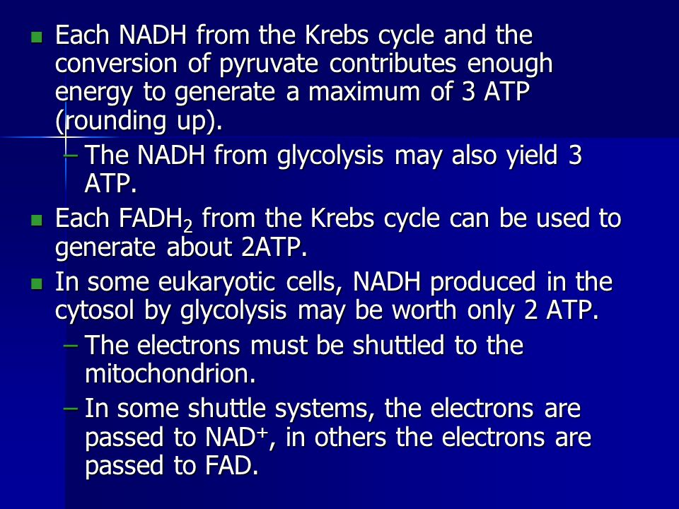 During respiration, most energy flows from glucose -> NADH -> electron transport chain -> proton-motive force -> ATP.