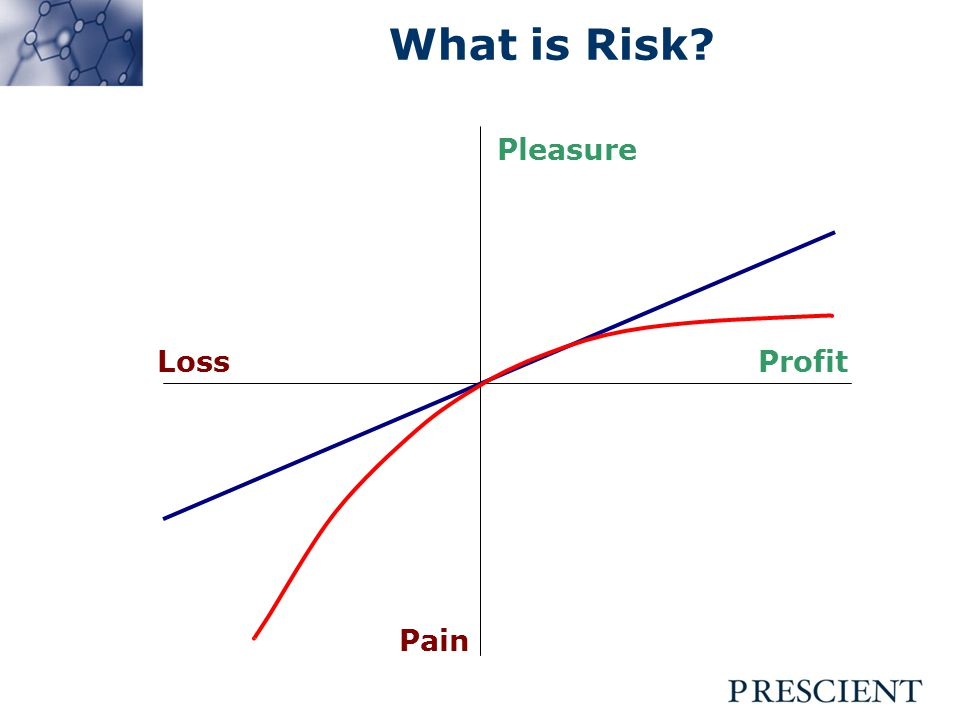 What is Risk Pleasure Pain LossProfit