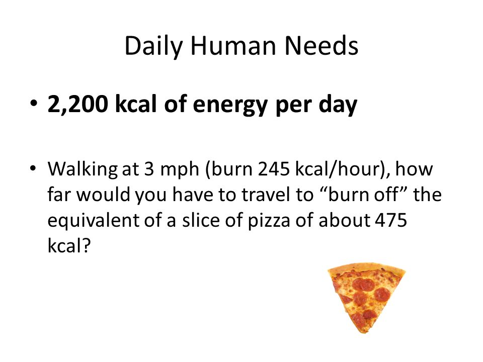 Daily Human Needs 2,200 kcal of energy per day Walking at 3 mph (burn 245 kcal/hour), how far would you have to travel to burn off the equivalent of a slice of pizza of about 475 kcal