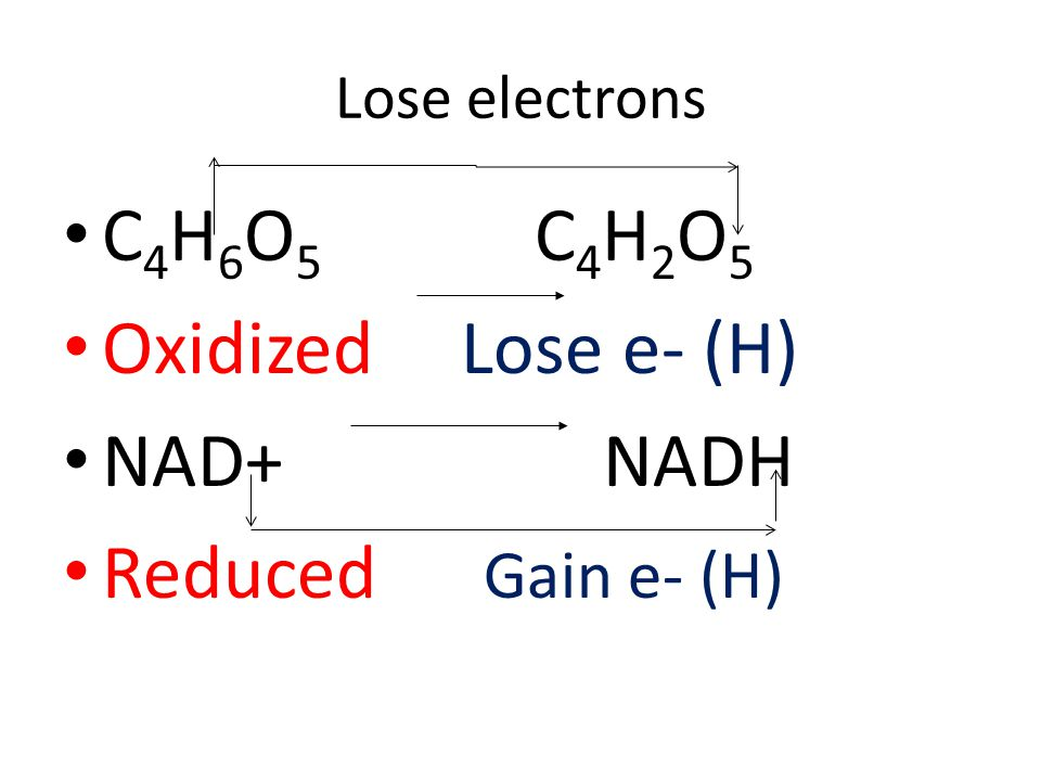 Lose electrons C 4 H 6 O 5 C 4 H 2 O 5 Oxidized Lose e- (H) NAD+ NADH Reduced Gain e- (H)