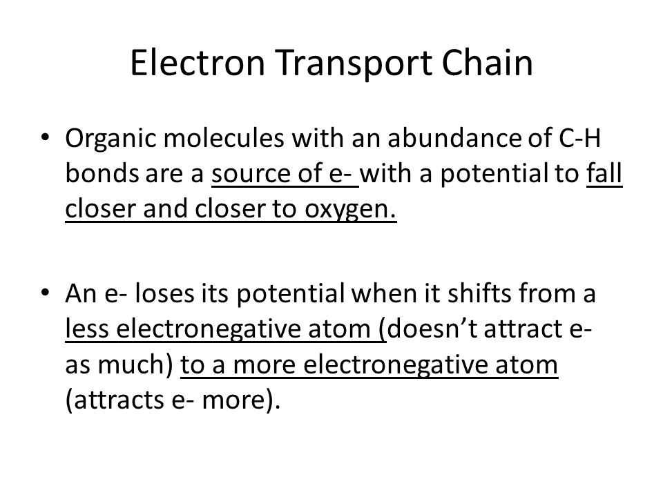 Electron Transport Chain Organic molecules with an abundance of C-H bonds are a source of e- with a potential to fall closer and closer to oxygen.