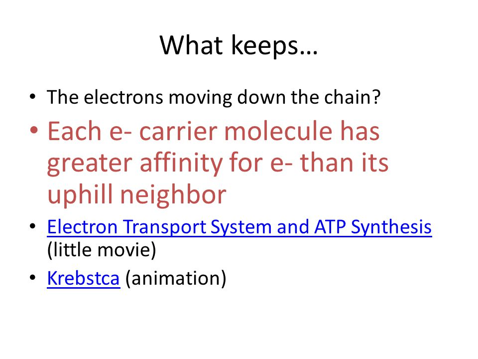 What keeps… The electrons moving down the chain? Each e- carrier molecule has greater affinity for e- than its uphill neighbor Electron Transport Syst