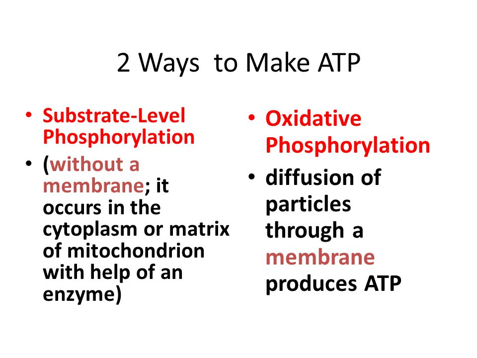 2 Ways to Make ATP Substrate-Level Phosphorylation (without a membrane; it occurs in the cytoplasm or matrix of mitochondrion with help of an enzyme) Oxidative Phosphorylation diffusion of particles through a membrane produces ATP