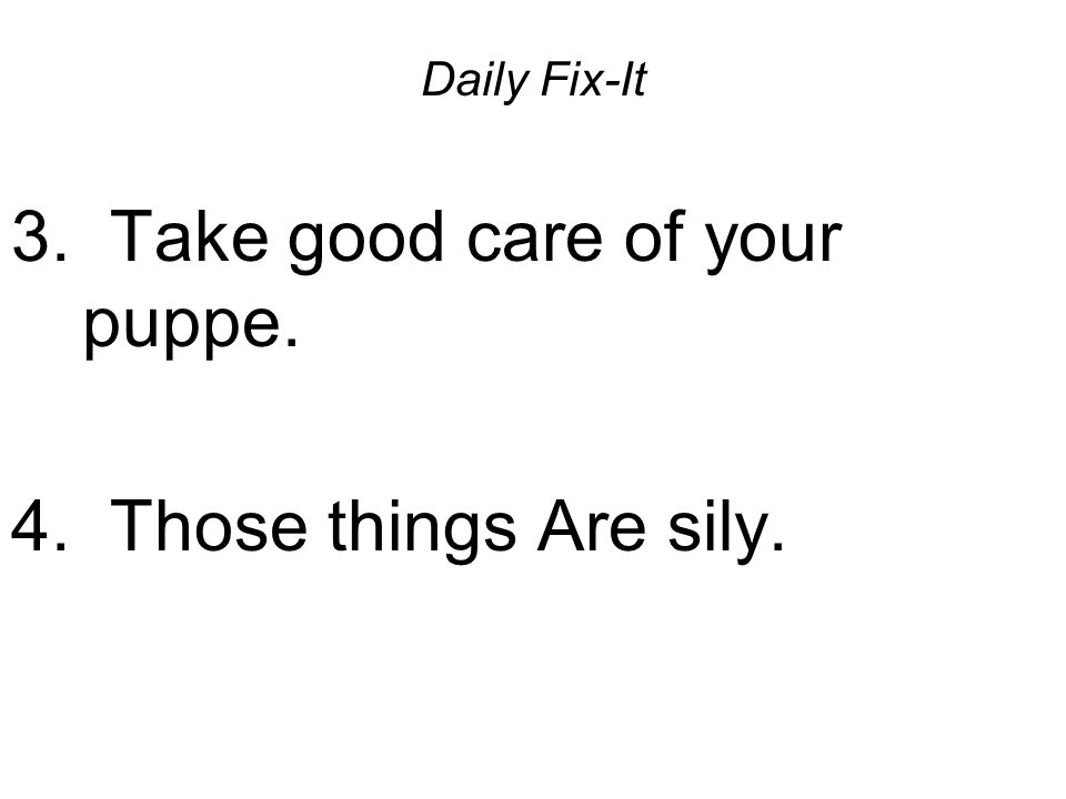 Daily Fix-It 3.take good care of your puppe. Take good care of your puppy.