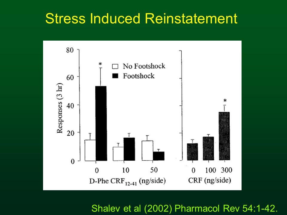 Stress Induced Reinstatement Shalev et al (2002) Pharmacol Rev 54:1-42.
