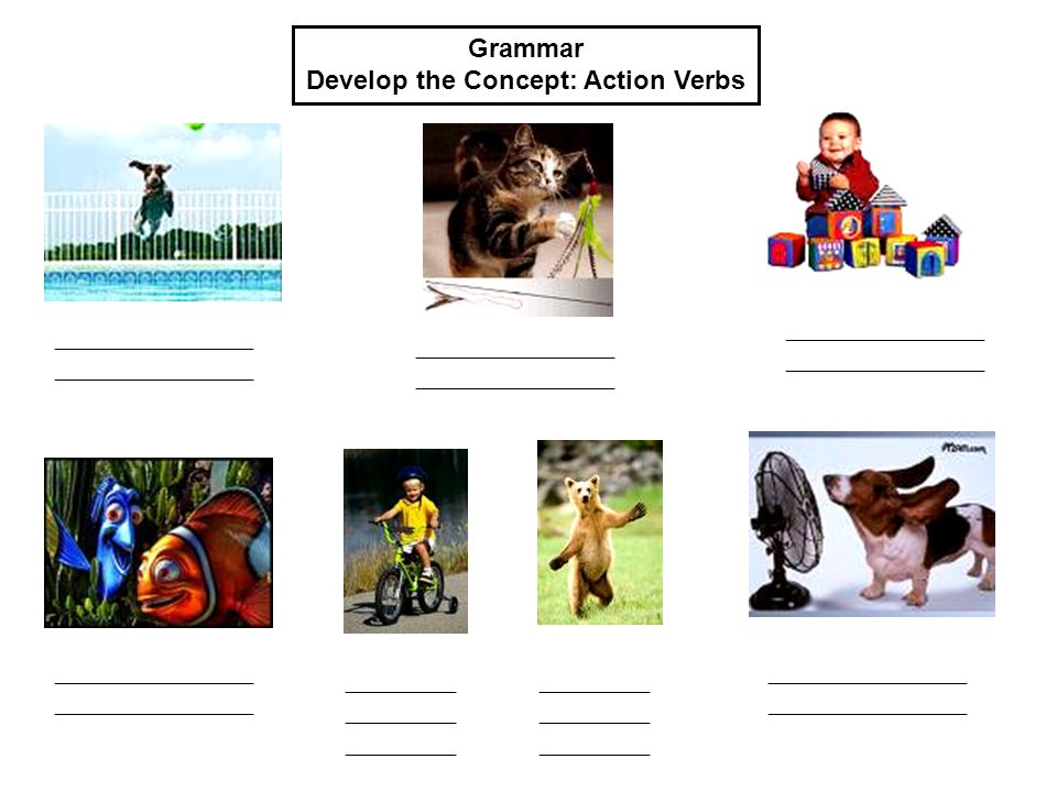 Grammar Develop the Concept: Action Verbs __________________ __________________ __________________ __________________ __________ __________ __________