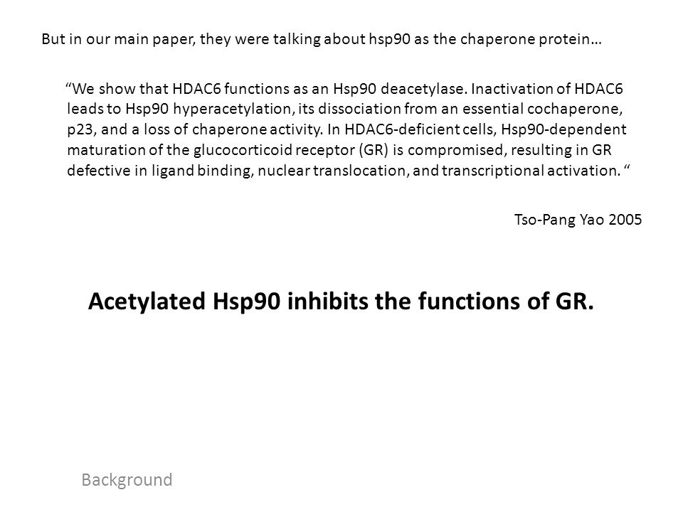 HDAC6 Regulates Glucocorticoid Receptor Signaling in Serotonin Pathways with Critical Impact on Stress Resilience Fig 1 : To make sure there were lots of HDAC6 in raphe