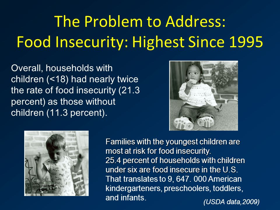 The Problem to Address: Food Insecurity: Highest Since 1995 Overall, households with children (<18) had nearly twice the rate of food insecurity (21.3