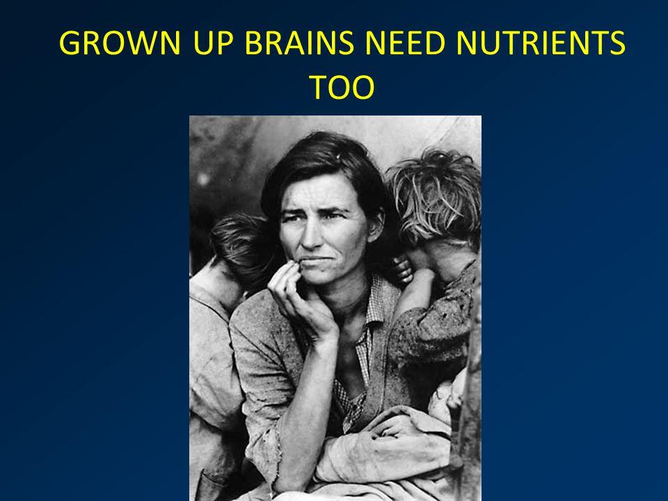 brain GROWN UP BRAINS NEED NUTRIENTS TOO