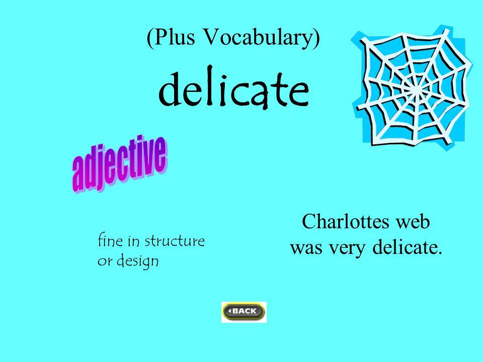 (Plus Vocabulary) de licate Charlottes web was very delicate. fine in structure or design