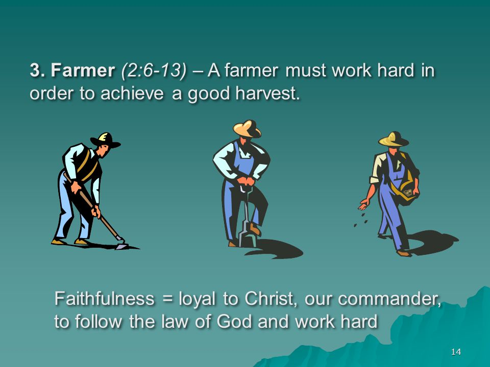 14 3.Farmer (2:6-13) – A farmer must work hard in order to achieve a good harvest.