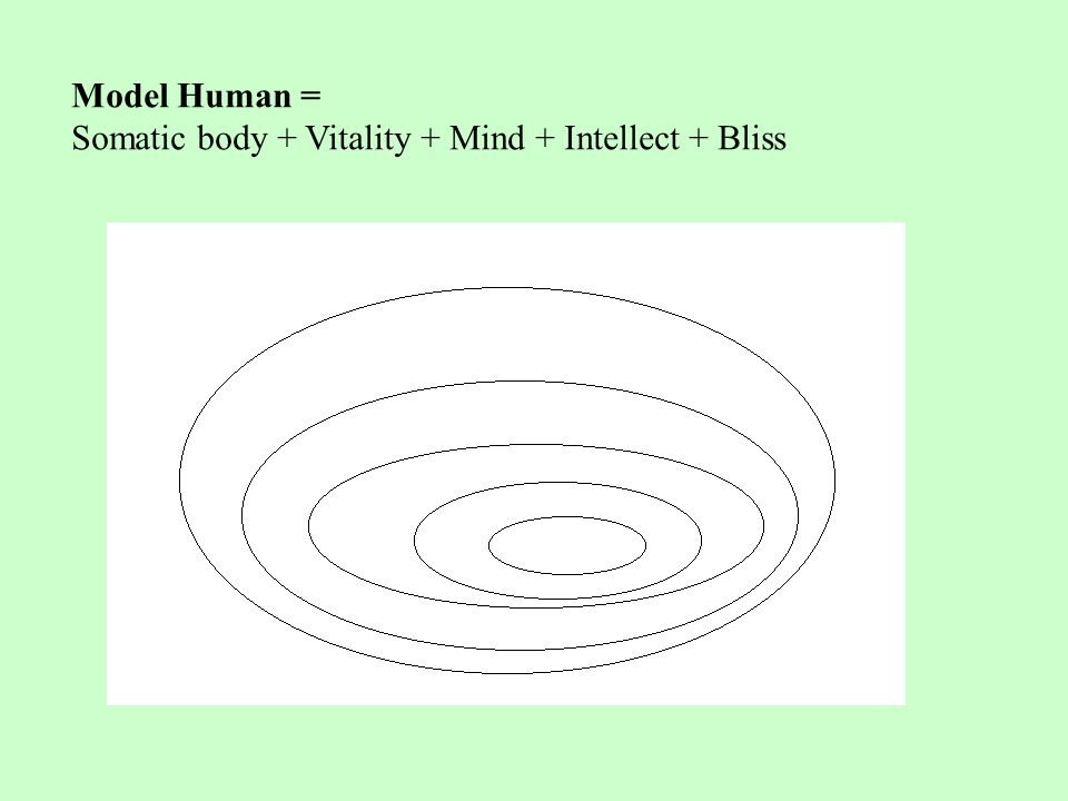 Model Human = Somatic body + Vitality + Mind + Intellect + Bliss