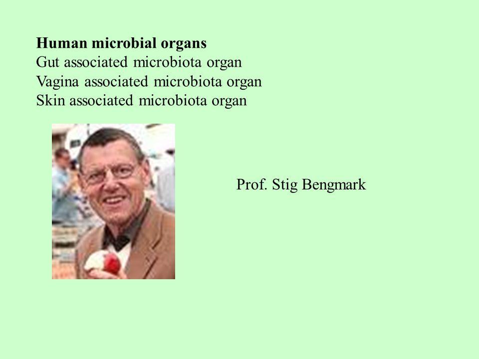 Human microbial organs Gut associated microbiota organ Vagina associated microbiota organ Skin associated microbiota organ Prof.