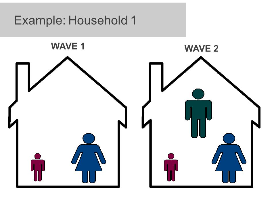 Example: Household 1 WAVE 1 WAVE 2