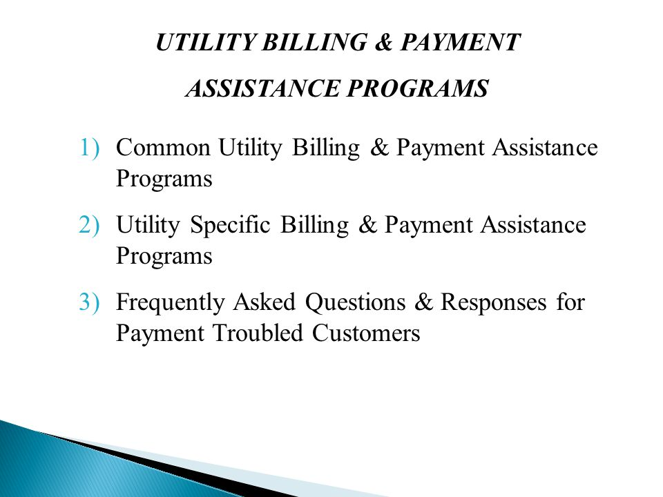 COMMON UTILITY BILLING & PAYMENT ASSISTANCE PROGRAMS Presenter: Anita Carfora – Central Hudson Gas & Electric
