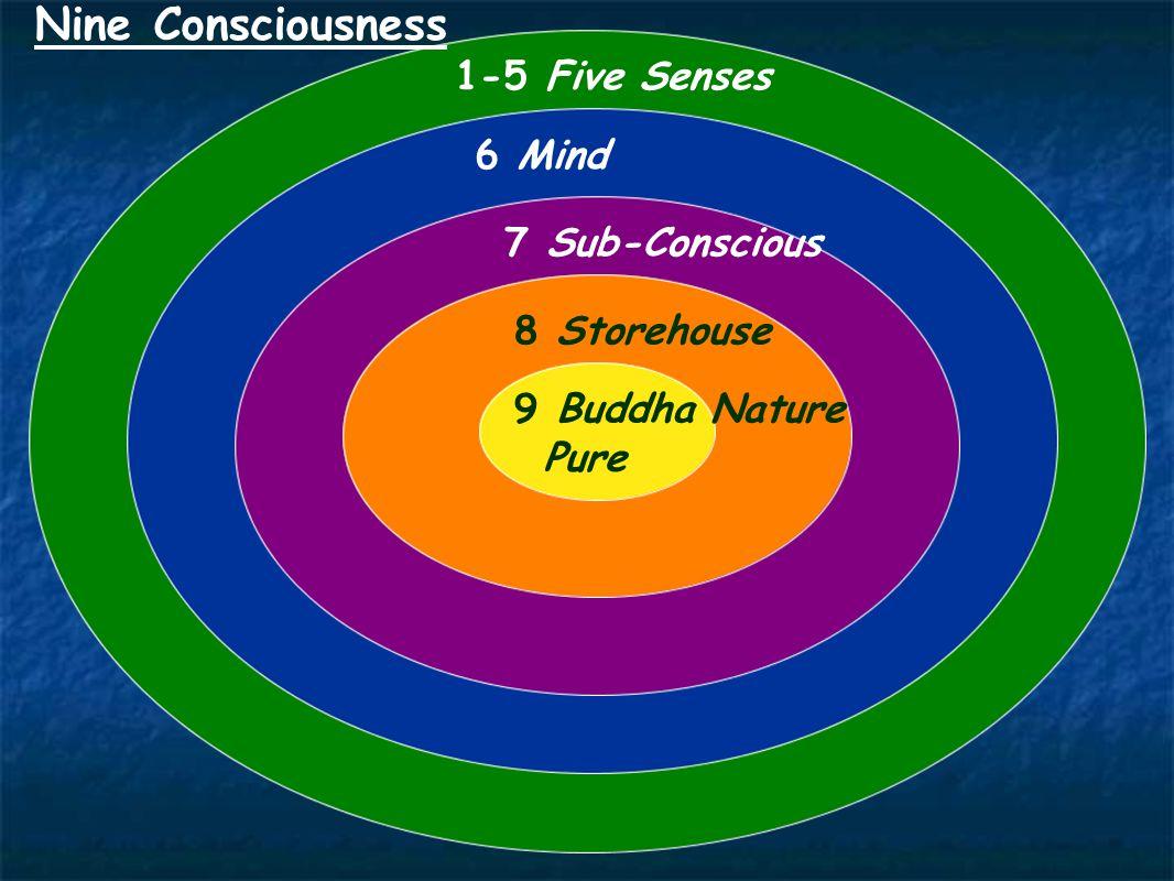 1-5 Five Senses Nine Consciousness 6 Mind 7 Sub-Conscious 8 Storehouse 9 Buddha Nature Pure