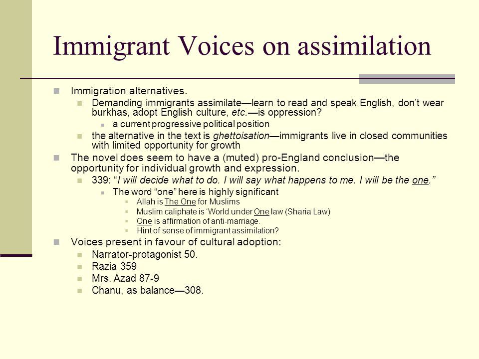 Immigrant Voices on assimilation Immigration alternatives.