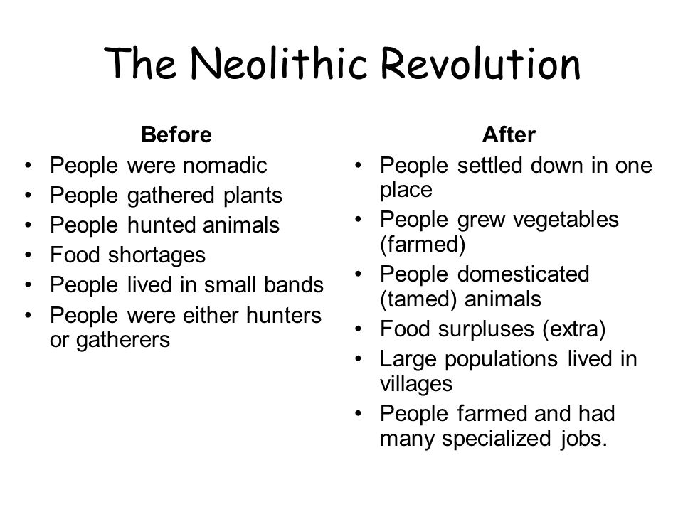 The Neolithic Revolution Before People were nomadic People gathered plants People hunted animals Food shortages People lived in small bands People wer