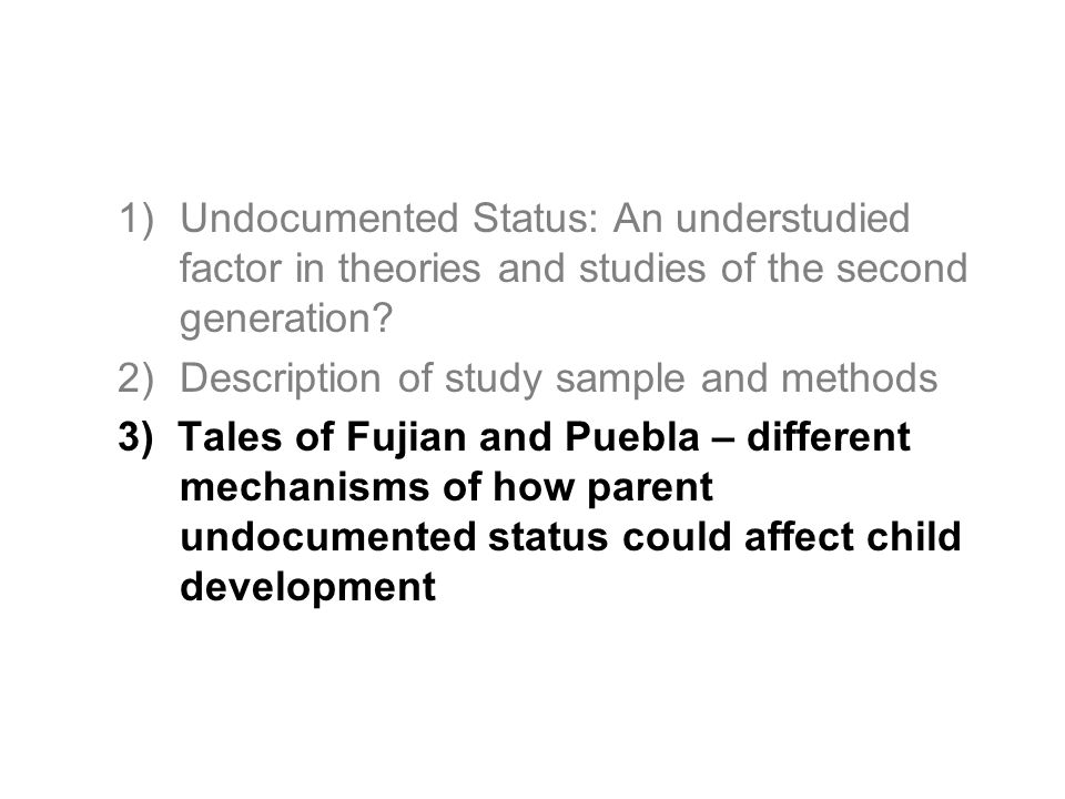 1)Undocumented Status: An understudied factor in theories and studies of the second generation? 2)Description of study sample and methods 3) Tales of