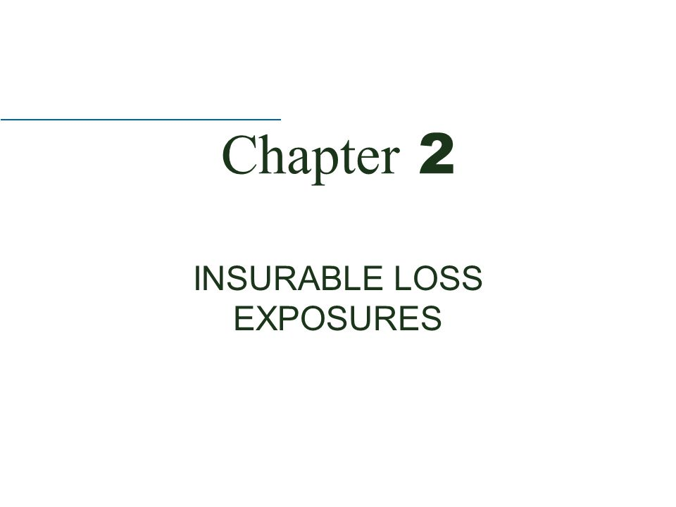 Chapter 2 INSURABLE LOSS EXPOSURES
